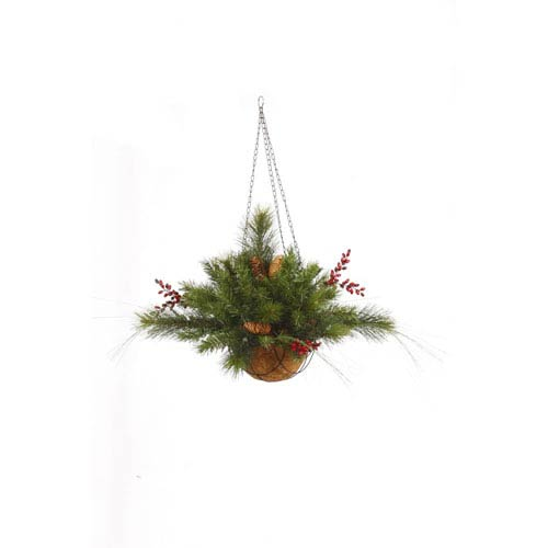 Green Mixed Berry Cone Hanging Basket 12-inchX20-inch