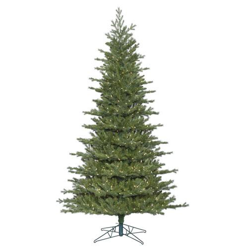 6 Ft. 6 In. Eastern Frasier Tree