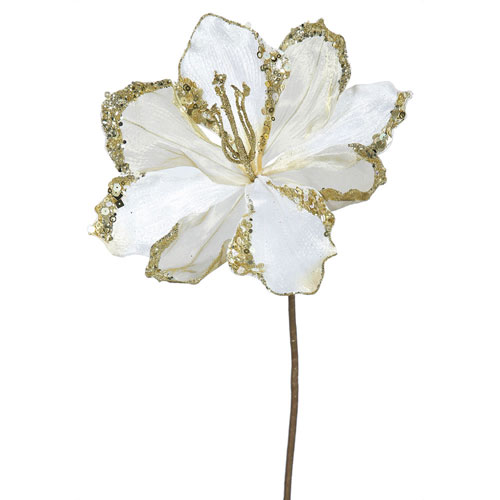 Cream Amaryllis Flower, Set of Three
