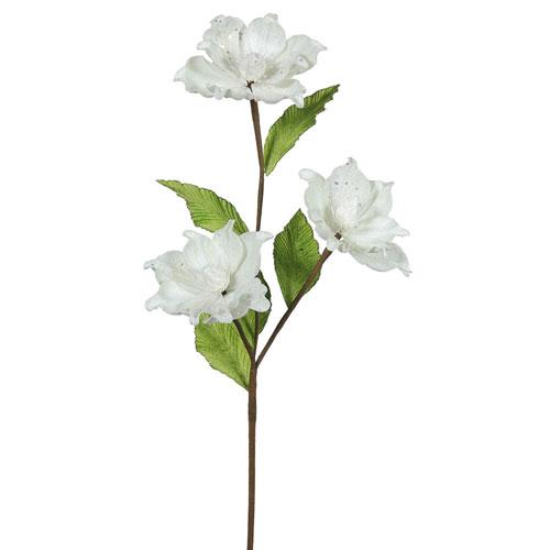Cream Magnolia Flower, Set of Six