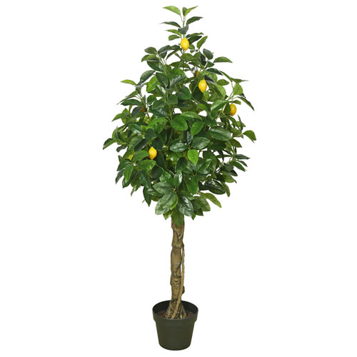 51 In. Real Touch Lemon Tree with Pot