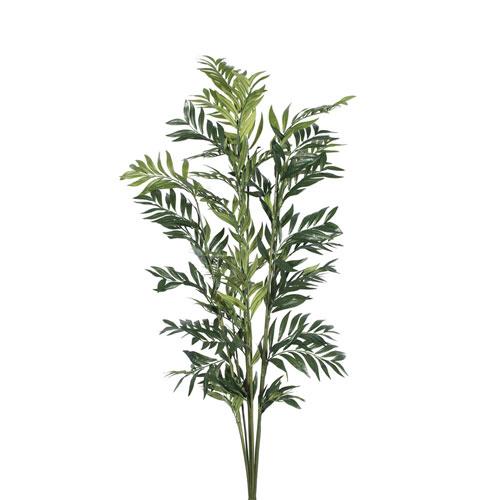 5 Ft. Robellini Palm