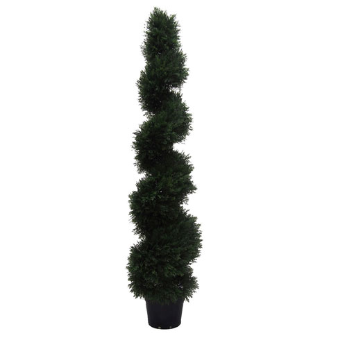 5 Ft. Cedar Spiral in Pot (UV)
