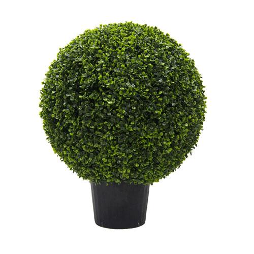 24 In. Boxwood Ball In Pot UV