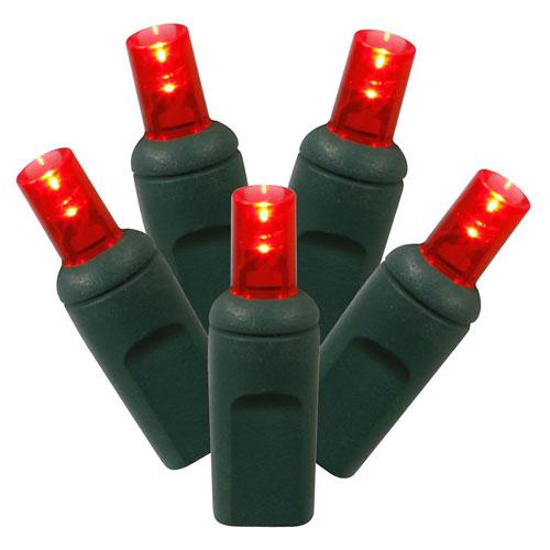 Red LED Light Set with 100 Lights