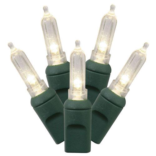 Warm White LED Italian Light Set with 50 Lights