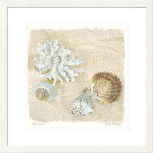 Global Gallery Shells IV By Judy Mandolf, 26 X 26-Inch Wall Art