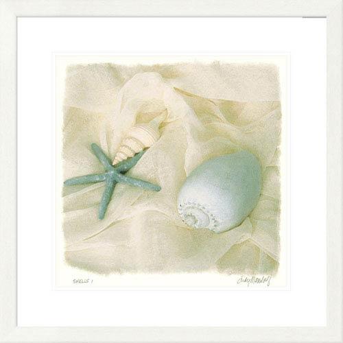 Global Gallery Shells I By Judy Mandolf, 26 X 26-Inch Wall Art