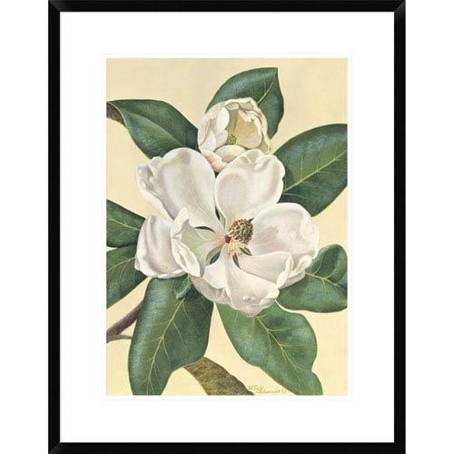Global Gallery Afternoon Magnolia By Waltraud Fuchs Von Schwarzbek, 28 X 21-Inch Wall Art