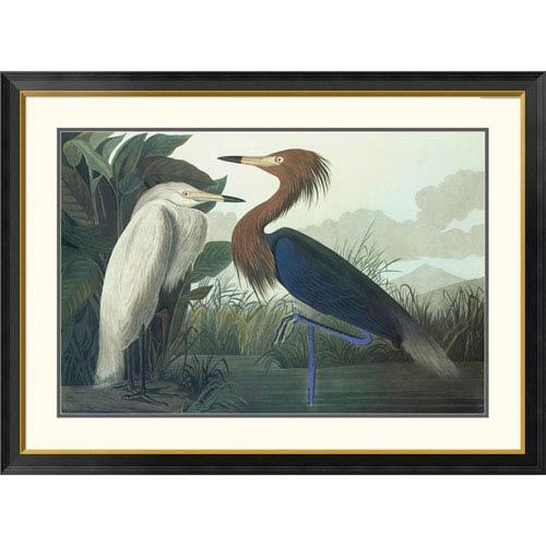 Global Gallery Purple Heron By John James Audubon, 34 X 46-Inch Wall Art