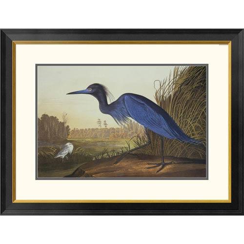 Global Gallery Blue Crane Or Heron By John James Audubon, 26 X 34-Inch Wall Art