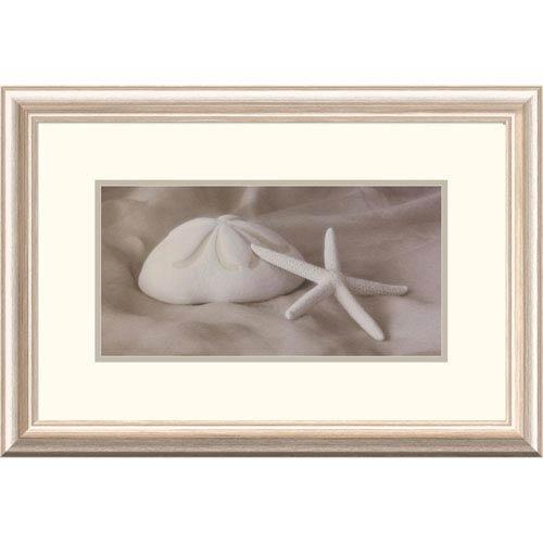 Global Gallery Shell Sonnet L By Judy Mandolf, 16 X 24-Inch Wall Art