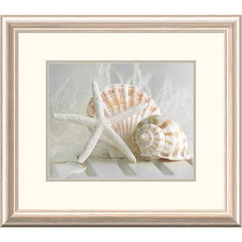 Global Gallery Cali Starfish I By Gaetano, 19 X 22-Inch Wall Art