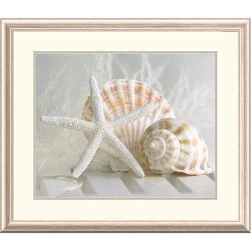 Global Gallery Cali Starfish I By Gaetano, 28 X 32-Inch Wall Art