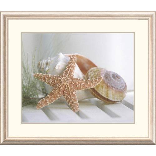 Global Gallery Cali Starfish Ii By Gaetano, 28 X 32-Inch Wall Art
