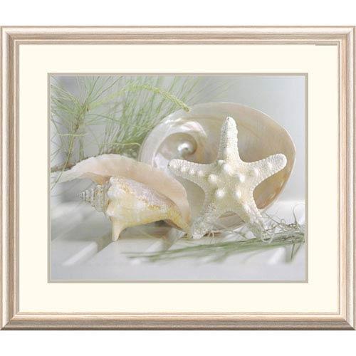 Cali Starfish IV By Gaetano, 28 X 32-Inch Wall Art