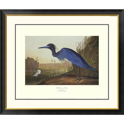 Global Gallery Blue Crane Or Heron By John James Audubon, 34 X 40-Inch Wall Art With Decorative Border