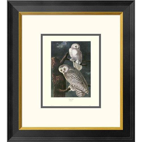 Global Gallery Snowy Owl By John James Audubon, 20 X 18-Inch Wall Art With Decorative Border