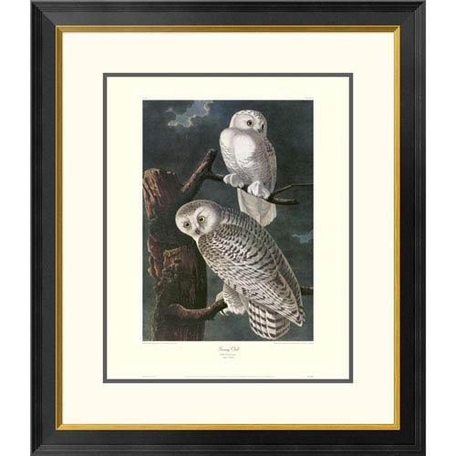Global Gallery Snowy Owl By John James Audubon, 30 X 26-Inch Wall Art With Decorative Border