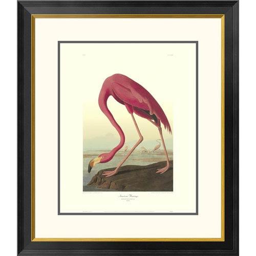 Global Gallery American Flamingo By John James Audubon, 30 X 26-Inch Wall Art With Decorative Border