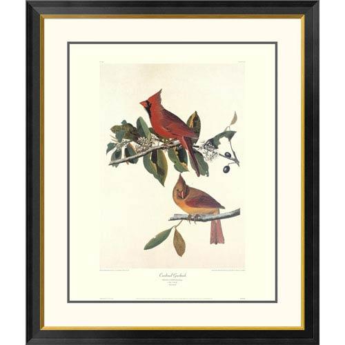 Global Gallery Cardinal Grosbeak By John James Audubon, 40 X 34-Inch Wall Art With Decorative Border