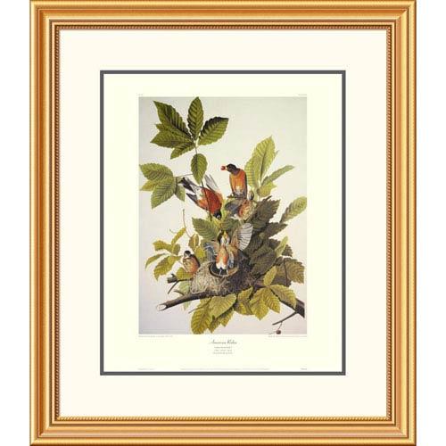 Global Gallery American Robin By John James Audubon, 30 X 26-Inch Wall Art With Decorative Border