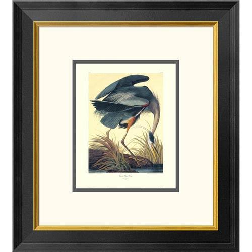 Global Gallery Great Blue Heron By John James Audubon, 20 X 18-Inch Wall Art With Decorative Border