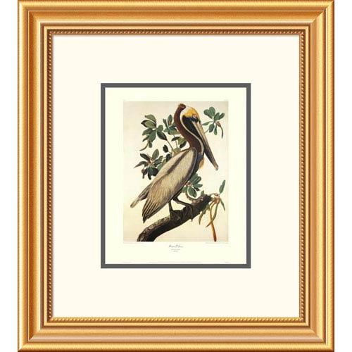 Global Gallery Brown Pelican By John James Audubon, 20 X 18 Inch ...
