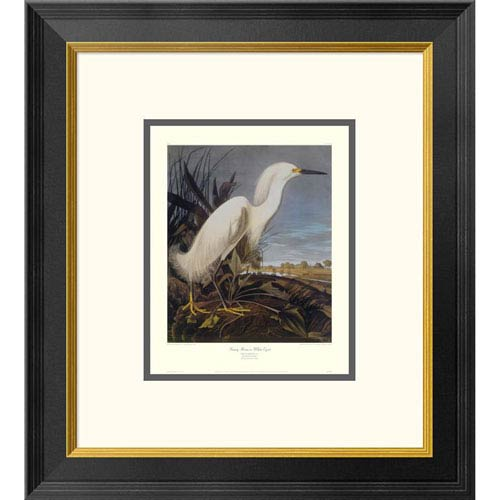 Global Gallery Snowy Heron Or White Egret By John James Audubon, 20 X 18-Inch Wall Art With Decorative Border