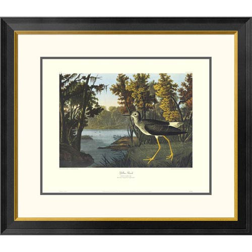 Global Gallery Yellow Shank By John James Audubon, 26 X 30-Inch Wall Art With Decorative Border