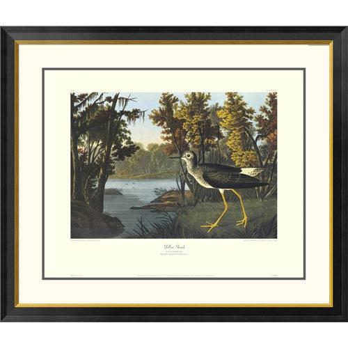 Global Gallery Yellow Shank By John James Audubon, 34 X 40-Inch Wall Art With Decorative Border