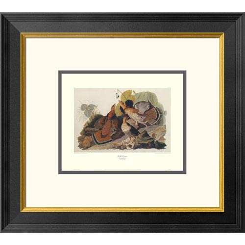 Global Gallery Ruffed Grouse By John James Audubon, 18 X 20-Inch Wall Art With Decorative Border