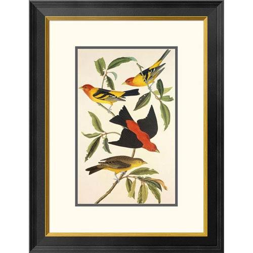 Global Gallery Louisiana Tanager, Scarlet Tanager By John James Audubon, 26 X 20-Inch Wall Art