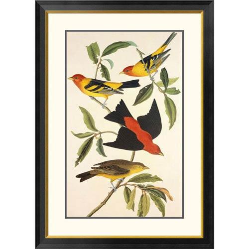 Global Gallery Louisiana Tanager, Scarlet Tanager By John James Audubon, 40 X 28-Inch Wall Art