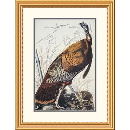 Global Gallery Wild Turkey By John James Audubon, 34 X 26-Inch Wall Art