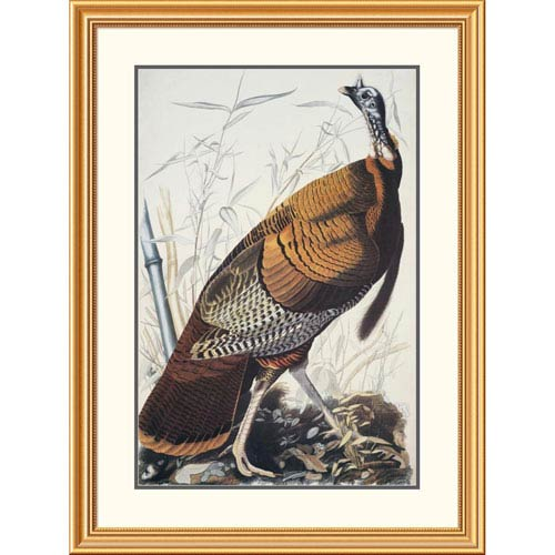 Global Gallery Wild Turkey By John James Audubon, 40 X 30-Inch Wall Art