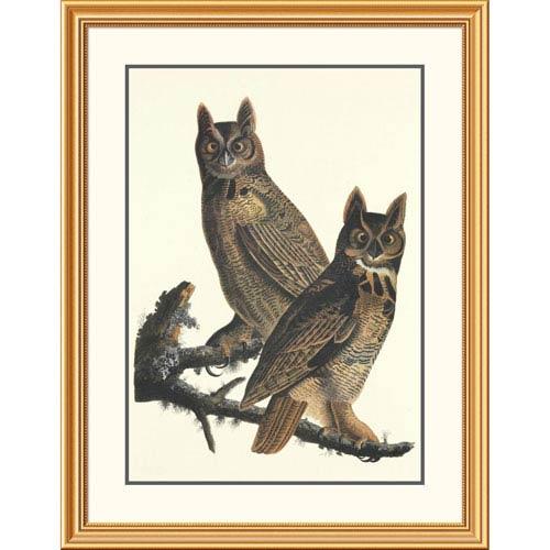 Global Gallery Great Horned Owl By John James Audubon, 40 X 31-Inch Wall Art