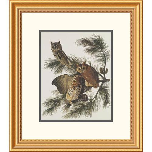 Global Gallery Little Screech Owl Or Mottled Owl By John James Audubon, 24 X 21-Inch Wall Art