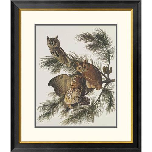 Global Gallery Little Screech Owl Or Mottled Owl By John James Audubon, 30 X 26-Inch Wall Art