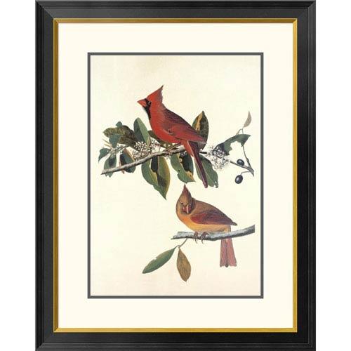Global Gallery Cardinal Grosbeak By John James Audubon, 32 X 25-Inch Wall Art