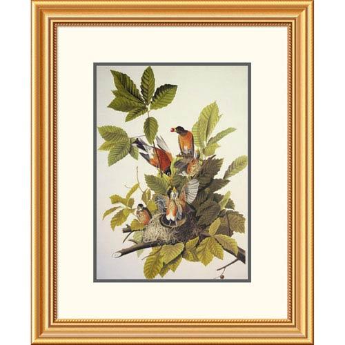 Global Gallery American Robin By John James Audubon, 26 X 21-Inch Wall Art