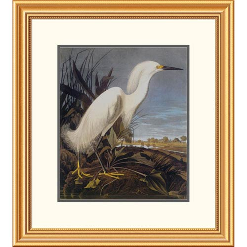 Global Gallery Snowy Heron Or White Egret By John James Audubon, 26 X 23-Inch Wall Art