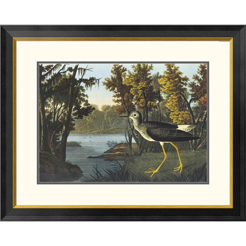 Global Gallery Yellow Shank By John James Audubon, 25 X 32-Inch Wall Art