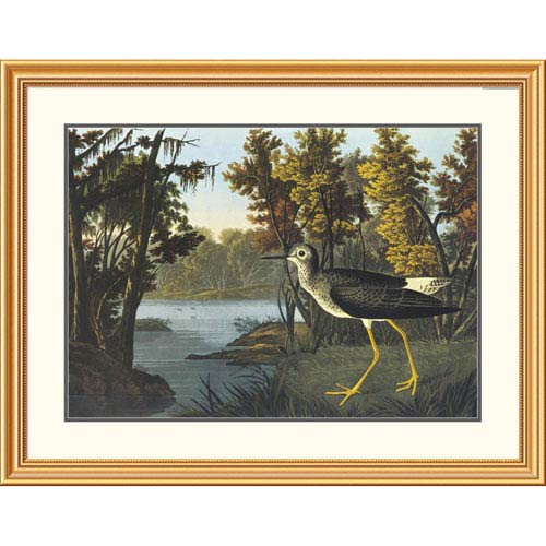 Global Gallery Yellow Shank By John James Audubon, 31 X 40-Inch Wall Art