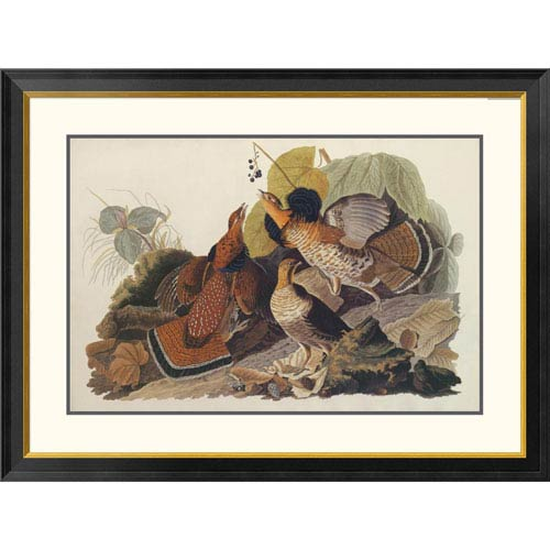 Global Gallery Ruffed Grouse By John James Audubon, 30 X 40-Inch Wall Art