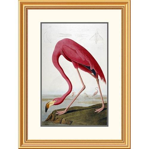 Global Gallery American Flamingo By John James Audubon, 32 X 24-Inch Wall Art