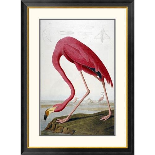 Global Gallery American Flamingo By John James Audubon, 40 X 29-Inch Wall Art