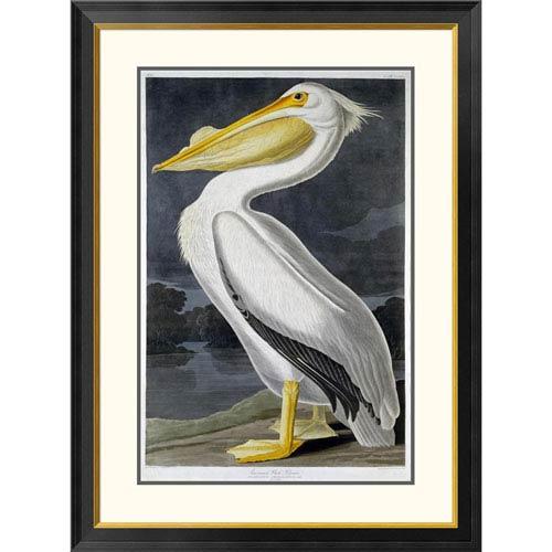 Global Gallery American White Pelican By John James Audubon, 40 X 29-Inch Wall Art