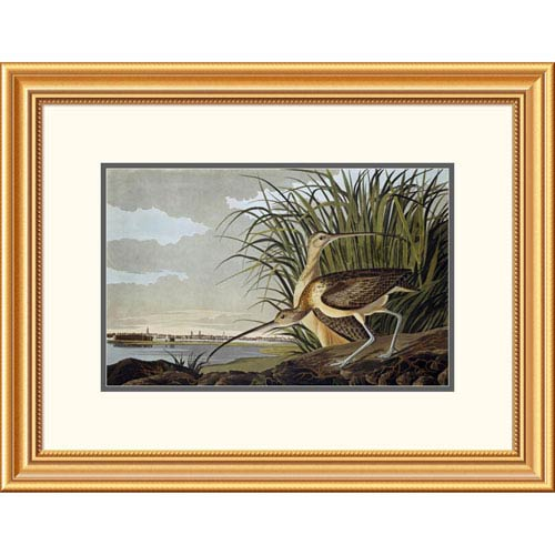 Global Gallery Male And Female Long Billed Curlew By John James Audubon, 20 X 26-Inch Wall Art