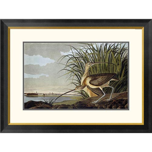 Global Gallery Male And Female Long Billed Curlew By John James Audubon, 23 X 32-Inch Wall Art